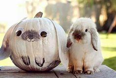 Halloween Happiness :)