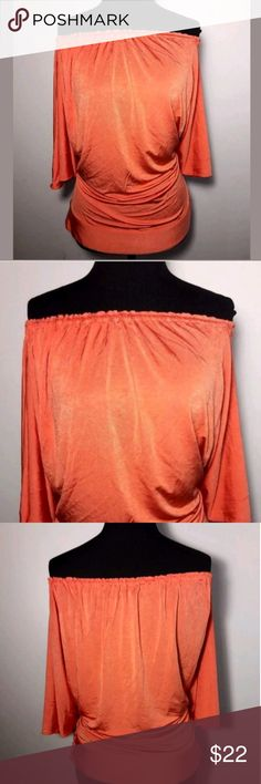 Host Pick Zara Basic Women's Blouse Zara Basic Blouse Size Small Off the Shoulder Batwing Sleeves Oversized Tapered Waist  Pre-owned in Excellent condition.  Please be sure to view all images.  Thank you for Looking & Sharing Happy Poshing Zara Tops Blouses