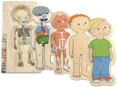 Lag puslespil - Anatomi dreng, 189kr