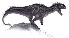 Megaraptor Allosauroid