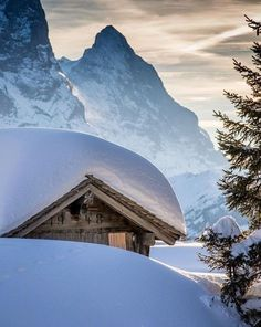 Beautiful winter landscape at Haslital! Photo by . Winter Images, Winter Pictures, Great Places, Beautiful Places, Switzerland Vacation, Winter Scenery, Snow Scenes, Winter Beauty, Landscape Pictures