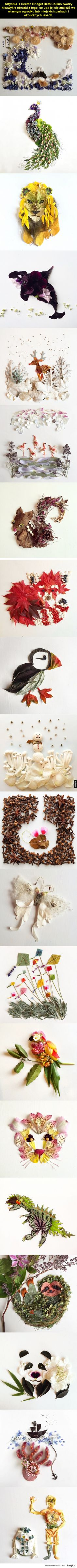 Botaniczna sztuka