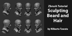 Zbrush Tutorial – Sculpting Beard and Hair by Nilberto Tawata
