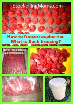 What is flash freezing?  Check out this post!