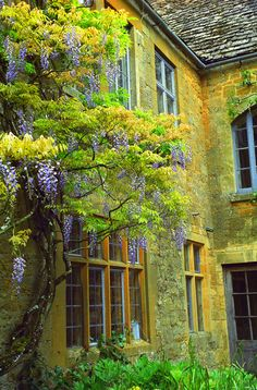 Hidcote, Cotswolds, England (by rick ligthelm One of the most beautiful places I've been The Places Youll Go, Places To See, Places To Travel, England Ireland, England And Scotland, English Countryside, English Manor, Mellow Yellow, Great Britain