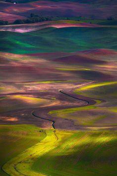 Palouse Hills - Washington, U.S