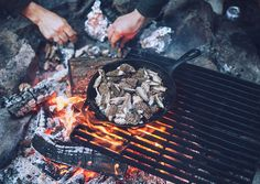 morels by the campfire