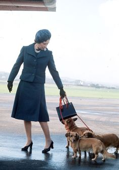 As Queen Elizabeth II celebrates 60 years on the throne, we look back at her love affair with her favorite animal: the corgi. Her first, Susan, was given to her on her eighteenth birthday and since then, the Queen has owned four to five at a time. Aberdeen Airport, Prins Philip, Reine Victoria, Royal Queen, Isabel Ii, Her Majesty The Queen, Love Dogs, Princess Margaret, Queen Elizabeth