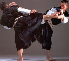 Shorinji Kempo Aikido, Kung Fu, Tai Chi, Kempo Karate, Okinawan Karate, Fighting Poses, Martial Arts Styles, Samurai Art, Martial Artists