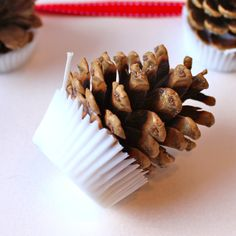 Homemade pinecone firelighters tutorial with instructions on how to use!