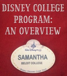 A brief overview of what the Disney College Program holds for participants