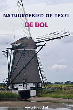 De Bol is een laag weidegebied met bijzondere planten en plassen vol wadvogels, dat niet toegankelijk voor publiek. De Bol is vooral bekend om zijn borchideeën, de markante molen en grote groepen eenden en ganzen. Wil je meer weten over de Bol, lees dan mijn website. Lees je mee? #debol #texel #wandelen #waddeneiland #nederland #natuurgebied #jtravel #jtravelblog