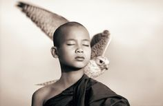 Ashes and Snow, Touching Photographs of People & Animals by Gregory Colbert