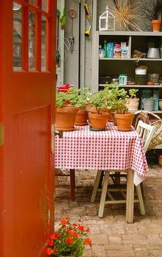 Geraniums make any room a potting shed of joy by selena Outdoor Furniture Sets, Decor, Garden Room, Room, Garden Design, Red Geraniums, Grandmas House, Sweet Home, Modern Garden Design