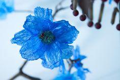 """Une fleur Clematis """"petroliferus azurea"""" réalisée avec un sac d'épicerie et du cœur filet de pêche (Crédit : William Amor)"""