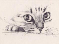 Cat Pencil Sketch Drawing - Imagen De Cat Pencil And Drawing Ideias Esboco Arte Animal Daily Sketch Walking Toward Me Animal Sketches Animal Drawings Cat Pencil Drawing By Wendy . Tumblr Drawings, Easy Drawings, Pencil Art, 2b Pencil, Drawing Sketches, Drawing Ideas, Drawing Tips, Sketching, Cat Sketch