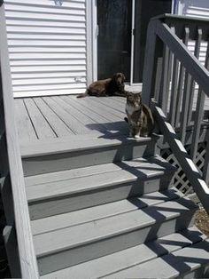 Ebony Deck Stain