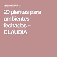 20 plantas para ambientes fechados – CLAUDIA
