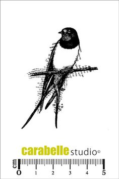 Tampon : Une hirondelle Carabelle Studio, Tampons mini : Nature - Art Stamp
