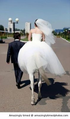Amazingly Timed Photos | He married a horse