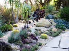 Love this layout with the grouping of plants and boulders for the front yard.