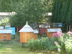 Beehives in Kolomyya city (Western Ukraine)