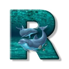 Buchstabe - Letter R Monogram Alphabet, Letters And Numbers, Wallpaper Backgrounds, Symbols, Lettering, Stickers, Illustration, Animals, Lovers