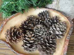 Natural Pine Cones Medium Size Holiday Rustic by VikisVarietyCraft, $8.00