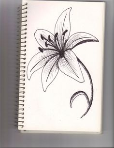 lily flower by lyddy666 traditional art drawings other 2010 2015 ...