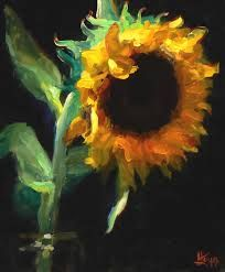 Single sunflower in jar
