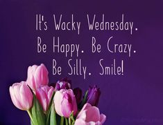 Wednesday Wishes : Happy Wednesday Greetings and Quotes - WishesMsg Wednesday Morning Quotes, Wednesday Greetings, Wednesday Wishes, Wacky Wednesday, Monday Quotes, Work Quotes, Good Morning Quotes, Daily Quotes, Quotes To Live By