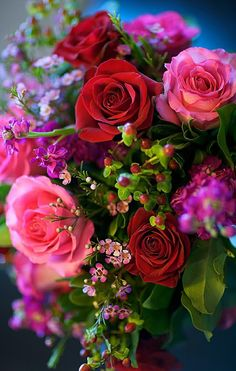 bouquet of roses Beautiful Flowers Wallpapers, Beautiful Rose Flowers, Beautiful Flower Arrangements, Exotic Flowers, Amazing Flowers, Pretty Flowers, Floral Arrangements, Rose Flower Wallpaper, Flower Backgrounds