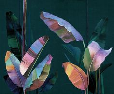 7 bold and diverse wallpapers from London Art that inspire us, and might just inspire your future accent wall too, in Boston and beyond. Plant Painting, Mural Painting, Mural Art, Wall Murals, Wall Art, Diy Wall, Paintings, London Art, Art Design