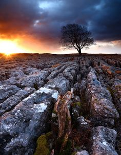 Malham Cove, England by James Appleton - Nature Photography (31). They filmed a bit of the 7th Harry Potter film here if you recall :)