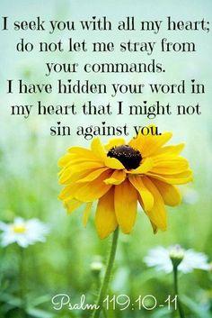 Psalm 119:10-11   https://www.facebook.com/photo.php?fbid=10151866307813091
