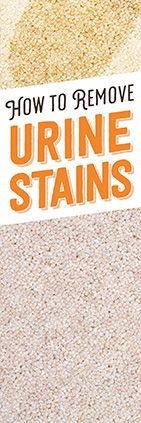 How to Remove Urine Stains - Simple Green