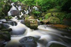 Becky Falls, Dartmoor National Park