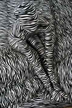 Zebra by Suya, 1978