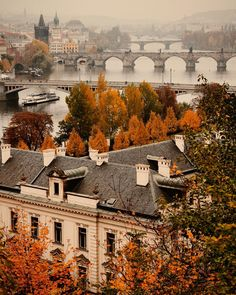 A foggy autumn day in Prague looking south down the River Vltava across the Mánesův Charles Legion and Jirásek bridges. Photo taken from the hi Wanderlust Travel, Autumn Inspiration, Travel Inspiration, Travel Ideas, Travel Tips, Beautiful World, Beautiful Places, Foto Top, Down The River