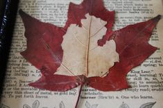 Michigan Mitten Leaf Art vintage dictionary page by EllaLucilleArt