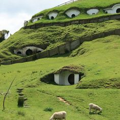 The Shire, New Zealand.  Imagine you can build, walk & live in The Shire.  Even a drone at 5 miles up w spy camera would have difficulty seeing your community abodes w Stealth painting.