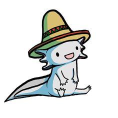 Cute Axolotl <3 AXOLOTTTTLLLLLL XD