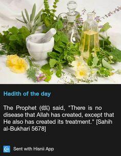 Hadith on illnesses Prophet Muhammad Quotes, Hadith Quotes, Muslim Quotes, Quran Quotes, Islam Hadith, Allah Islam, Islam Quran, Alhamdulillah, Islamic Inspirational Quotes