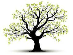 arbre dessin: ensemble de vecteurs - arbre décoratif et des feuilles vertes avec des ombres