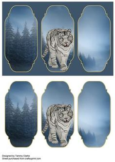 White Tiger Card Topper on Craftsuprint designed by Tammy Clarke - Quick and easy card topper for any occasion. Make one card or a couple of different ones. - Now available for download!