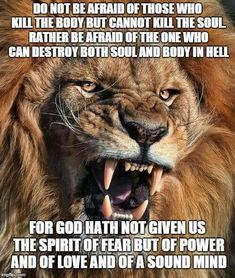 Lion Quotes, Spirit Of Fear, Do Not Be Afraid, Leo Quotes