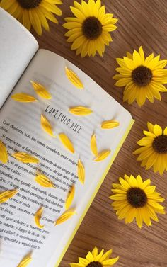 Spring Aesthetic, Flower Aesthetic, Book Aesthetic, Photography Basics, Book Photography, Creative Photography, Cute Emoji Wallpaper, Bear Wallpaper, Yellow Aesthetic Pastel
