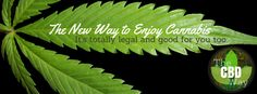 The CBD Way | A New Way to Enjoy Cannabis | The Legal & Healthy Way #CBD #CBDway #Cannabis #Marijuana #Hemp #HempOil #Cannabinoids #THC #MedicalMarijuana #legalizeit #Kannaway #kway #kannawaynation http://www.thecbdway.com