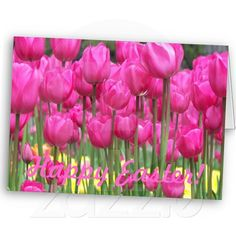 Pink Tulips Easter Card
