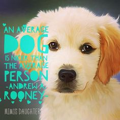 ❤️ #mimisdaughters Have a good week everybody - Pets too!